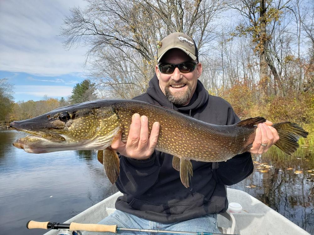 Fall Pike? - Fly Fishing - Maine Fly Fish